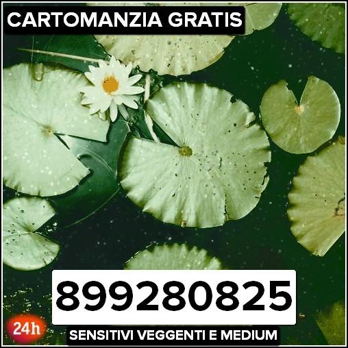 Cartomanzia Gratis Amore 899280825